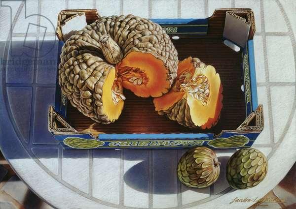 La Calabaza, 2002 (pastel on paper)