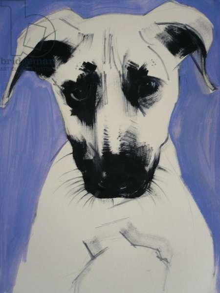 Puppy, 2011 (oil on board)