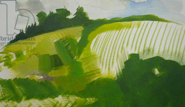Lakey Hill 2009 (oil on paper)