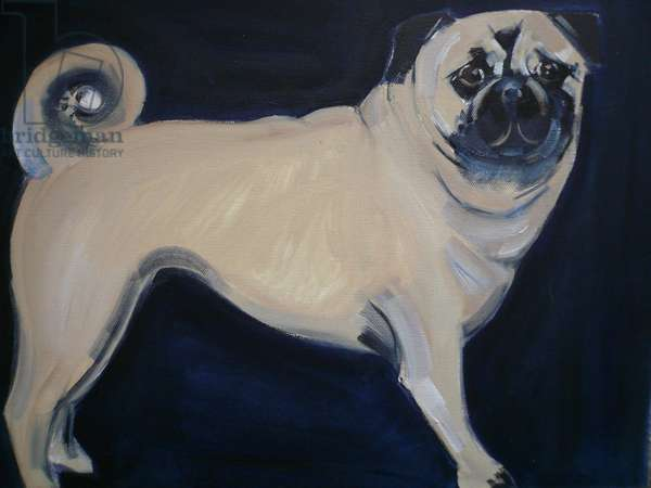 Pug, 2011 (oil on canvas)