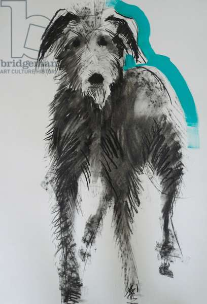 Lurcher, 2012 (charcoal and oil on paper)