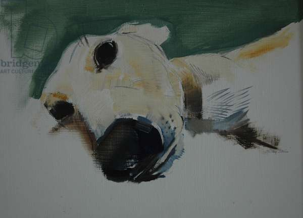 Greyhound, 2009 (oil on paper)