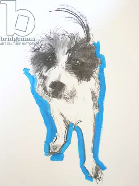 Terrier, 2012 (charcoal and oil on paper)