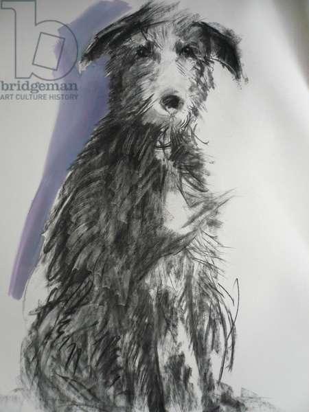 Deerhound, 2012 (oil on paper)