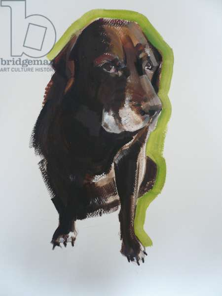Labrador, 2011 (oil on paper)