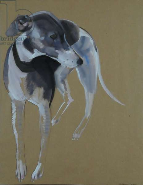 Lily, 2008 (oil on paper)