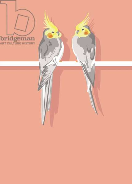 Parakeets, 2012 (mixed media)