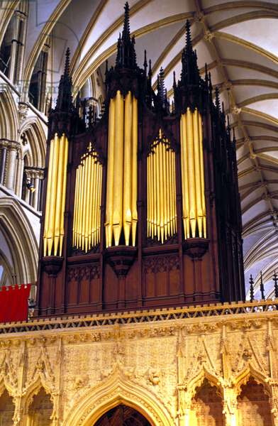 Organ with 5000 pipes