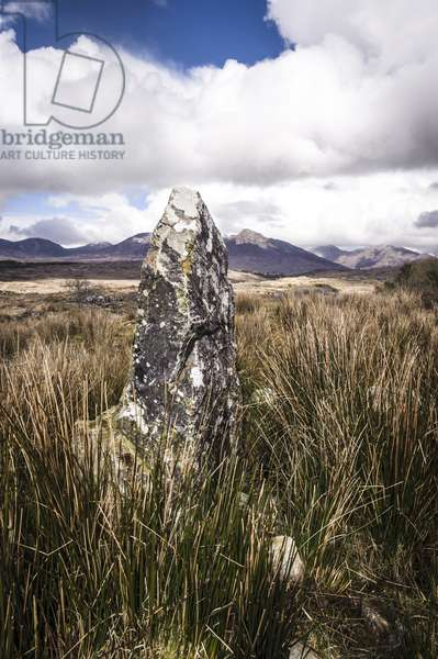 Standing stone and peat bogs