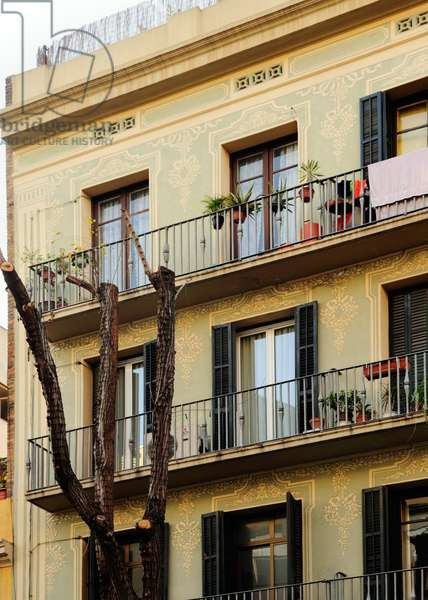 Picasso's apartment