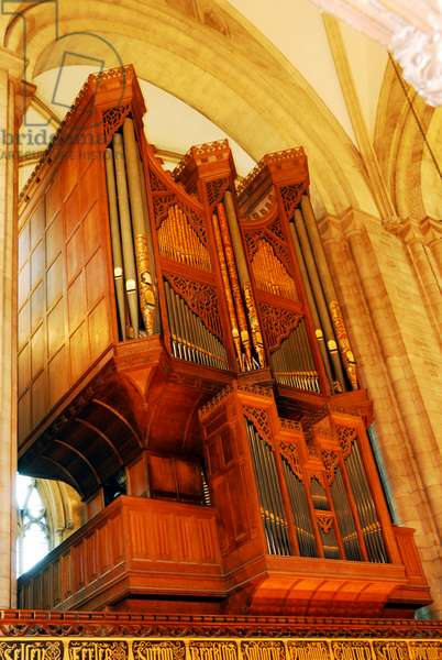 Chichester cathedral organ- Cathedral