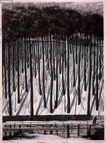 Clym Yeobright, 1999 (ink, w/c and gouache)