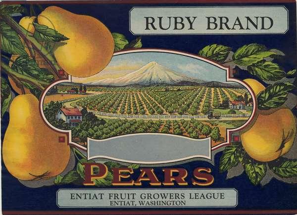 Ruby Brand Pears, Entiat Fruit Growers League, Entiat Washington (colour litho)
