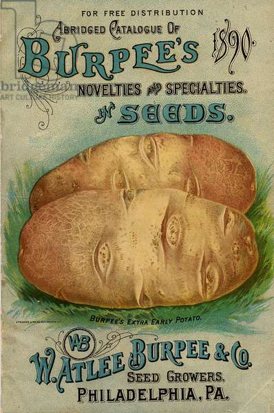 Abridged Catalogue of Burpee's Novelties and Specialties in Seeds, W. Atlee Burpee & Co., Philadephia, PA, 1890 (colour litho)