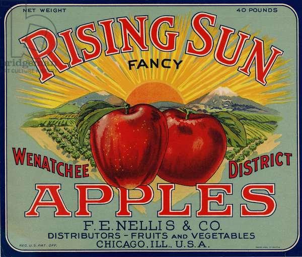 Rising Sun Fancy Apples, F.E. Nellis & Company, Chicago, Illinois (colour litho)