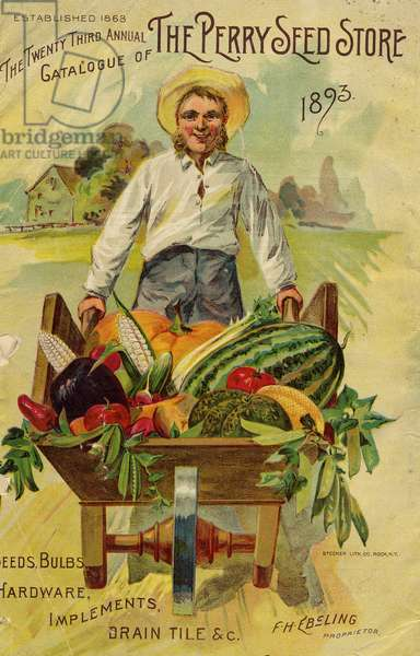 Seed catalogue from the The Perry Seed Store, Syracuse, NY, 1893 (colour litho)