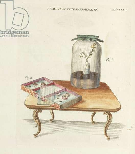Tab. CXXXIV : Jar & drawer on table, from Elementa Entomologica..., Regensburg : Gedruckt mit Weissischen Schriften, 1766 (hand-coloured engraving)