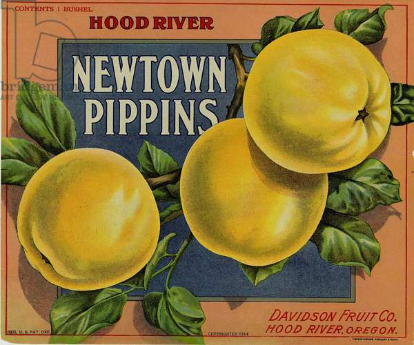 Hood River Newtown Pippins, Davidson Fruit Company, Hood River, Oregon, 1914 (colour litho)