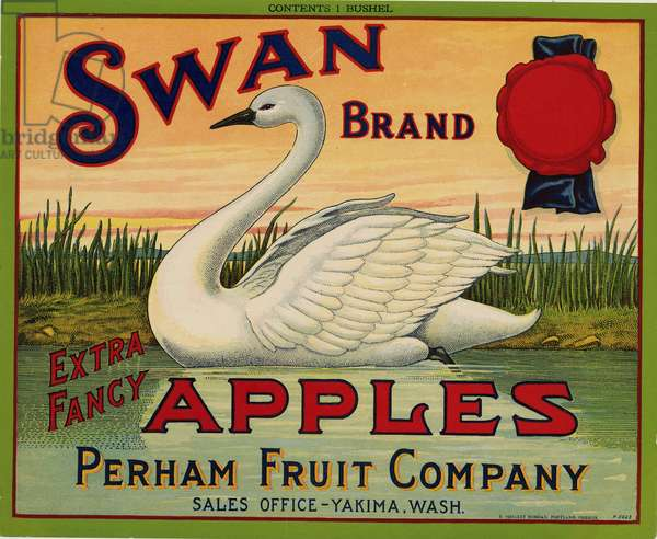 Swan Brand Extra Fancy Apples, Perham Fruit Company, Sales Office-Yakima, Wash. (colour litho)