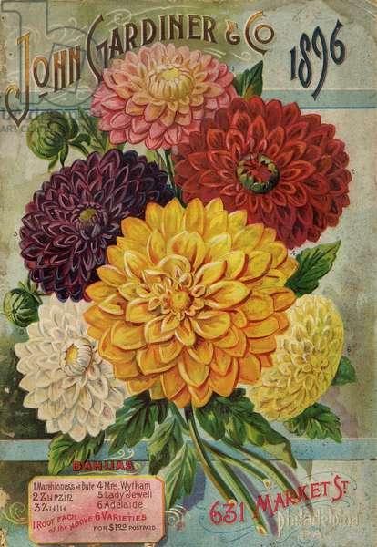 Seed Annual from John Gardiner & Co, Philadelphia, Pennsylvania, 1896 (colour litho)