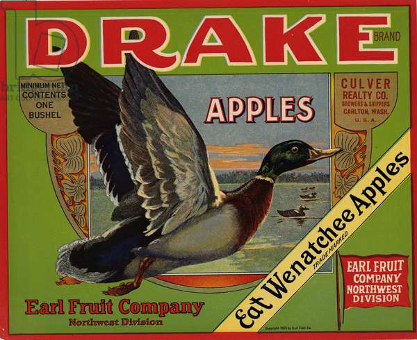 Drake Brand Apples, Earl Fruit Company, Northwest Division, Culver Realty Co. Growers & Shippers, Carlton, Washington, U.S.A., 1923 (colour litho)