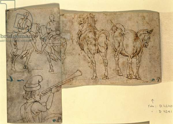 Inv no.38 recto Sketch of Horses, c. 1460-70 (pen and ink)