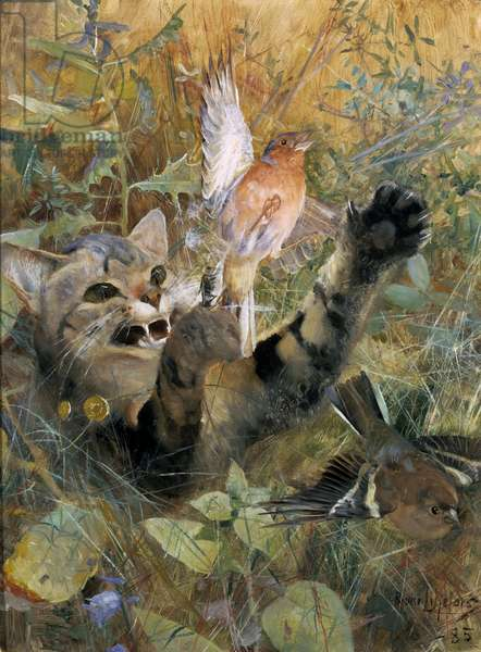 A Cat and a Chaffinch, 1885 (oil on canvas)