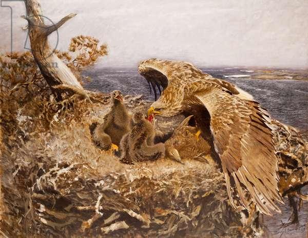 Sea Eagle's Nest, 1907 (oil on canvas)