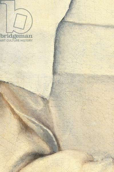 Portrait of the artist's sister (detail) in the garb of a nun, 1551 (oil on canvas)