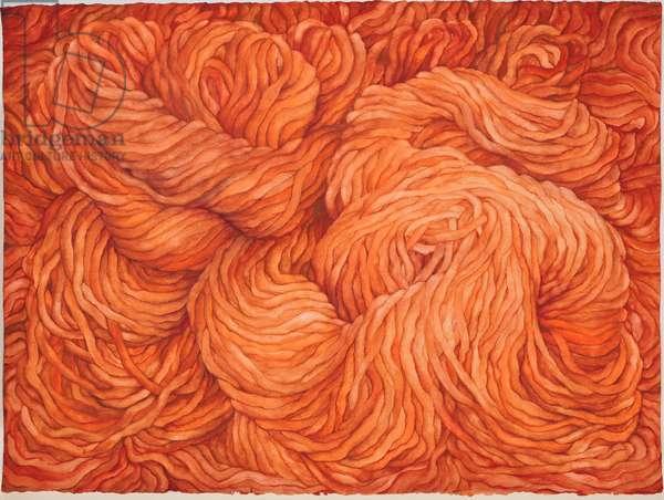 Wool Burnt Sienna, 2013, (gouache on paper)