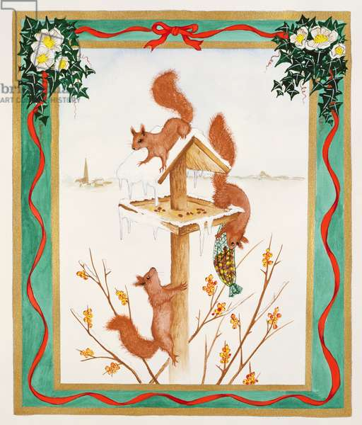 Squirrels raiding a bird-table