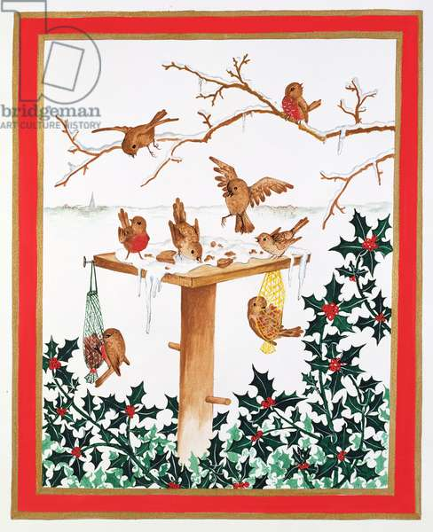 Robins and Sparrows at the Bird Table