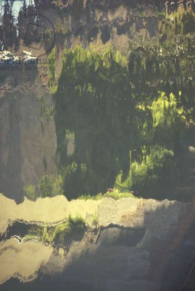 Water Reflections (photo)