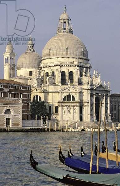 View of Santa Maria della Salute (photo)