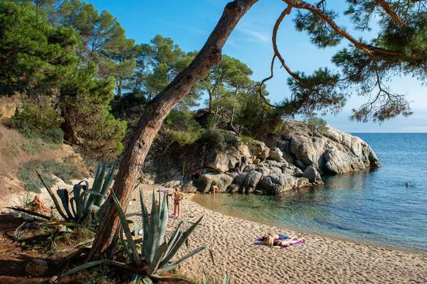 Platja d'Aro, Cala del Pi beach in Costa Brava, Cami de ronda, Girona province, Catalonia, Spain (photo)