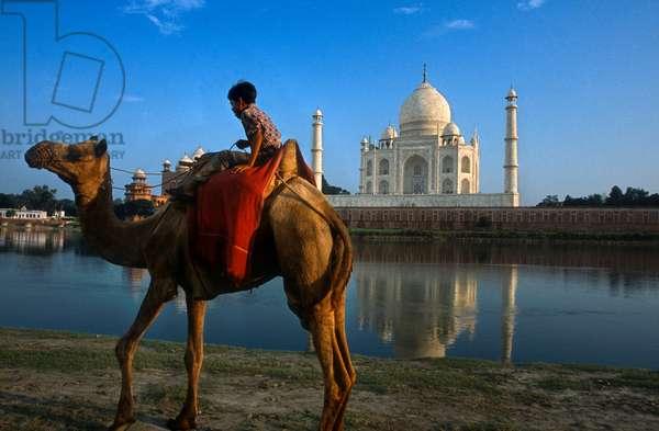 Taj Mahal, Agra, India (photo)