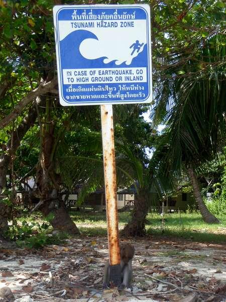 Tsunami hazard zone sign on Phi Phi don island, Andaman Island, Thailand (photo)
