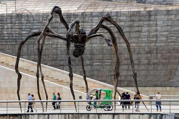 Giant spider in the foreground, Guggenheim Museum, Bilbao, Euskadi, Basque Country, Spain (photo)