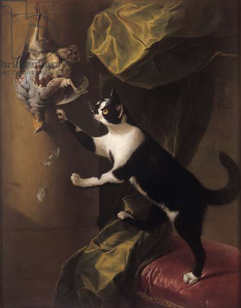 A cat with dead game, 1711 (oil on canvas)