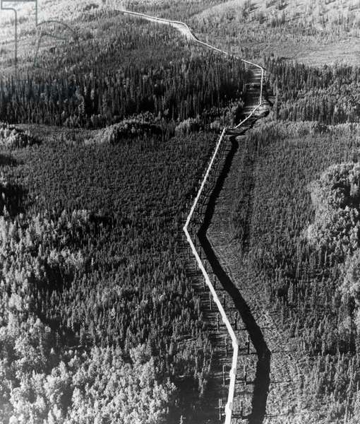 High angle view of an oil pipeline passing through a landscape, Trans Alaska Pipeline, Alaska, USA