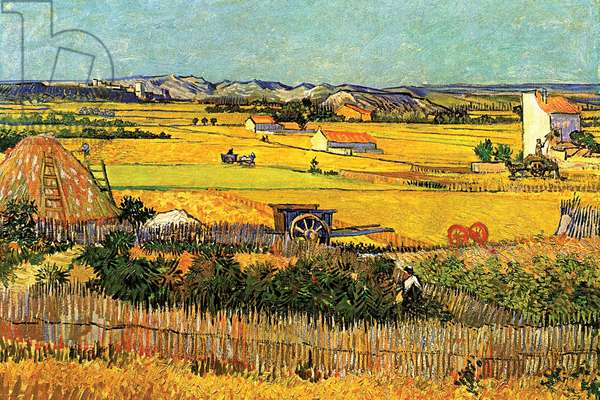 Harvest at La Crau with Montmajour in the Background, Fine Art (oil on canvas)