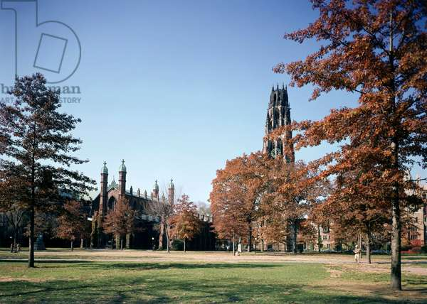 Yale University New Haven Connecticut USA
