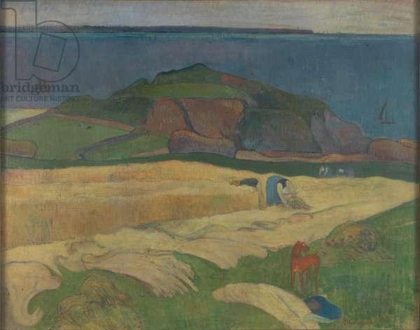 Harvest, Le Pouldu (oil on canvas)