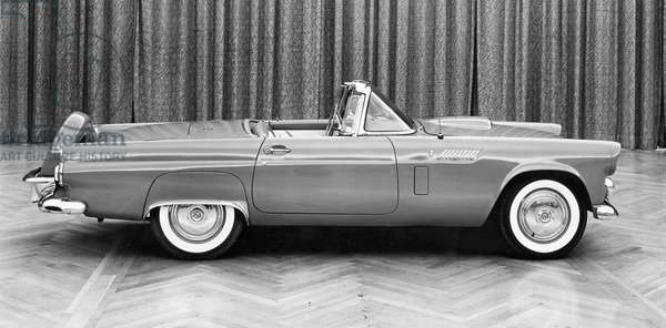 Side profile of a convertible car, 1956 Ford Thunderbird