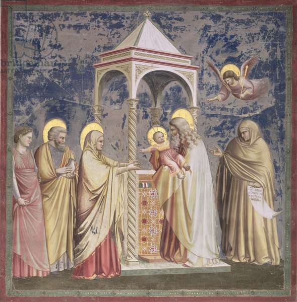 The Presentation of Christ in the Temple, c.1305 (fresco) (for detail see 65432)