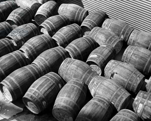 High angle view of a group of barrels on a dock