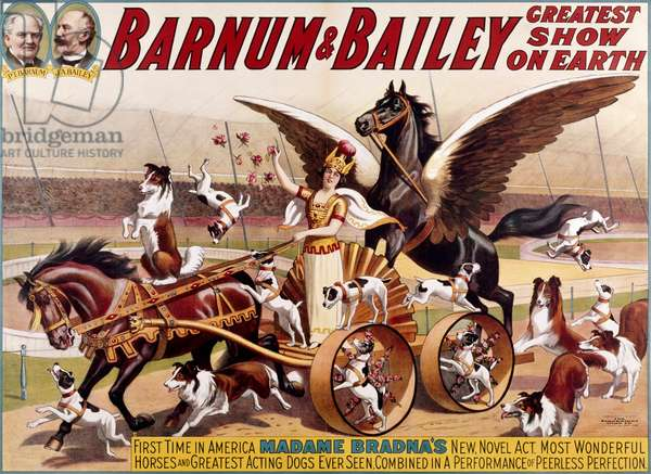 Madame Bradna's Horses and Dogs by Barnum & Bailey, Poster,