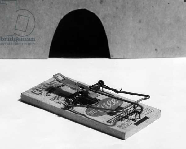 Close-up of a mousetrap near a mouse hole
