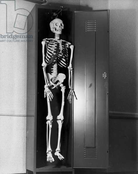 Human skeleton hanging in a locker