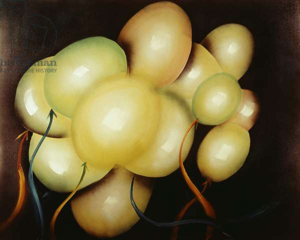 Balloons Up and Up by Walt Whipple